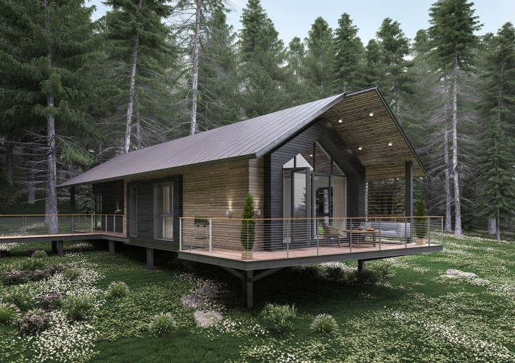 Afan Valley Forest Investment - Forest Zone Lodges